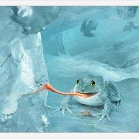 Арктическая снежная жаба на охоте