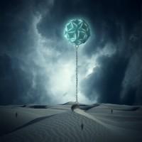 Коллаж - Вызов пустыне