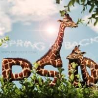 Создадим текстовой эффект в виде жирафа