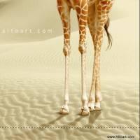 """""""Закручиваем"""" шею жирафа в photoshop"""