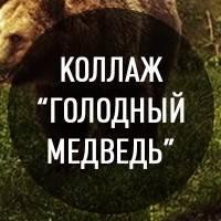 """Создание фотоманипуляции """"Голодный медведь"""""""