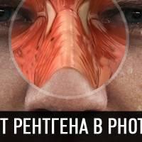 Эффект рентгена в photoshop